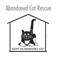 Abandoned Cat Rescue: Adopt an Abandoned Cat! Save a Life!