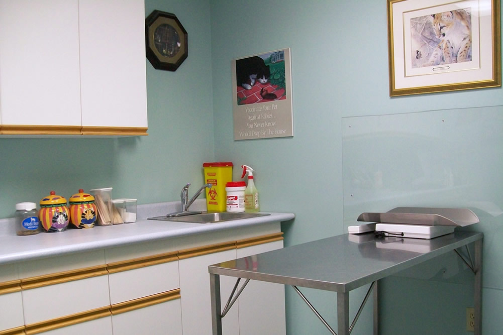 We keep our exam rooms pristine and we're happy to decorate to make our facilities warm and comfortable.